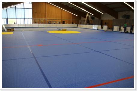 Installation des Inline-Hockey Sportbodens in Donaustauf
